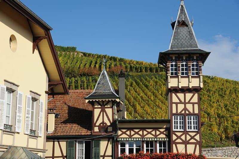 Maison Trimbach, Alsace, France